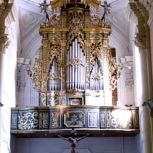 foto25-organo